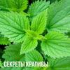 реклама у блоггера Екатерина Андреева