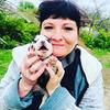 реклама на блоге Юлия Богданова