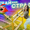 заказать рекламу у блоггера vdavankova