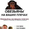 разместить рекламу в блоге Юрий Терехов