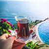 реклама в блоге Юлия Фетисова