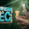 реклама у блогера Marmok