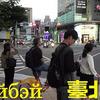 реклама на блоге Елена Ли