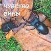 реклама на блоге Римма Карамова