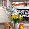 фото Светлана Рукумелка