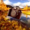 лучшие фото Дмитрий Куликов