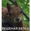 фото на странице Ольга Кравчук