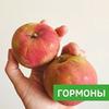 заказать рекламу у блогера Ольга Raw_vegfood