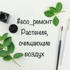 фотография Екатерина Amelyrain.eco