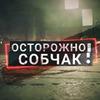 реклама на блоге Ксения Собчак