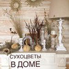 новое фото aliya_home