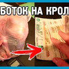 реклама на блоге Максим ДОМ В ДЕРЕВНЕ