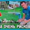 реклама в блоге Максим ДОМ В ДЕРЕВНЕ