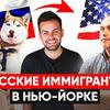 реклама в блоге sergey_kosenko