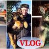 реклама на блоге yulianka1981