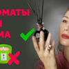 заказать рекламу у блоггера shelnat