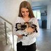 реклама на блоге Анна Любимова