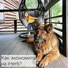 фото Юлия organika.blog