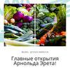 заказать рекламу у блогера Джессика Андреева