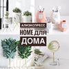 реклама у блоггера Елена Алексискис