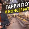 лучшие фото Алексендр Stradivaly