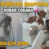 разместить рекламу в блоге Светлана Слыщенко