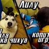 реклама на блоге Виталий Пиганов