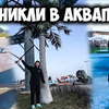 разместить рекламу в блоге Андрей AX