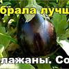 реклама у блогера Лилия Корнилич