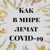 разместить рекламу в блоге Елена Орлова