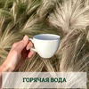 реклама у блогера Евгения Колодкина