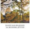 фото на странице Ника Климова
