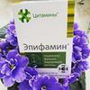 разместить рекламу в блоге Любовь Верещагина