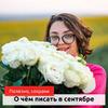 реклама у блогера Евгения Цюра