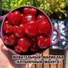 реклама на блоге Арина Мармеладная