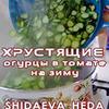 реклама в блоге Хеда Шидаева