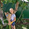 разместить рекламу в блоге Ольга Коваленко