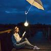 реклама в блоге Алина Via_photo