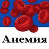 реклама в блоге Настя Фридом