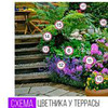 реклама у блогера Ольга Пупасова-Максимова