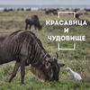 фотография Сергей Доля