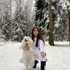 реклама на блоге Алиса Гилфанова