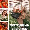 реклама на блоге Ева Шафран