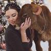реклама на блоге Анастасия Ирискина