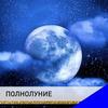реклама на блоге Ольга Аристова