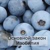 реклама в блоге Юлия Леночкина