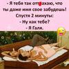 реклама у блогера chebnik21