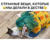 фотография Алевтина Оливка