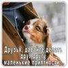 фото на странице Светлана Ефремова
