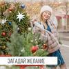 реклама в блоге Айрин Дейтс